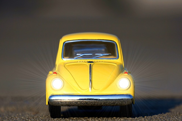 žlutý brouk