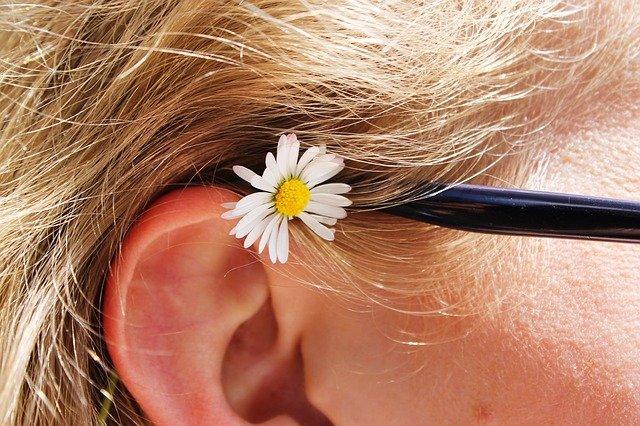 sedmikráska za uchem.jpg
